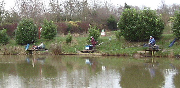 Coarse Fishing Pond